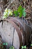 Vieux baril de vin Image stock