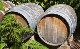Vieux barils en bois de vintage sur le raisin dans le vignoble de Ténérife, Îles Canaries Photo libre de droits