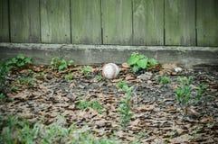 Vieux base-ball dans une cour Image libre de droits