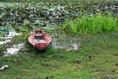 Vieux bateau dans l'étang de lotus Image libre de droits