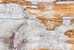 Vieux bois âgé de fond Images stock