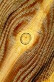Vieux bois Image stock