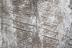 Vieux bois gris Photographie stock libre de droits