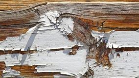 Vieux bois peint Photographie stock libre de droits