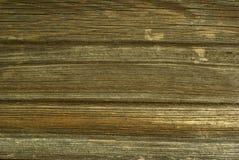 Vieux bois superficiel par les agents. Image stock