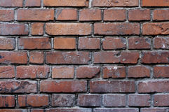 Vieux brickwall Photos libres de droits