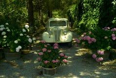 Vieux camion de collecte de minuterie Photos libres de droits