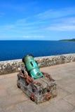 Vieux canon au château de Culzean Photographie stock