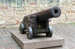 Vieux canon de fer Images stock