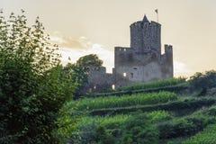 Vieux château au-dessus des vignobles au coucher du soleil Photographie stock