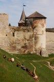 Vieux château dedans dans Kamianets-Podilskiy et chèvres Photos libres de droits