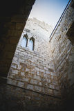 Vieux château espagnol de forteresse fait en pierre Photo stock