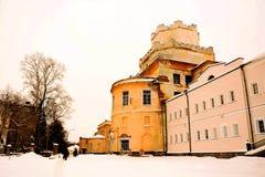 Vieux château ruiné dans la forêt Photographie stock libre de droits