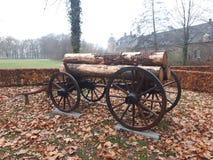 Vieux chariot avec des logarithmes naturels images stock
