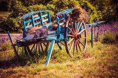 Vieux chariot avec la lavande en Provence Images libres de droits