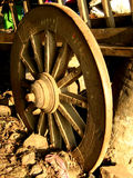 Vieux chariot de boeuf photos stock