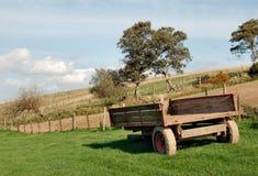 Vieux chariot de ferme dans le pré Photographie stock libre de droits