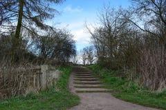 Vieux chemin Image stock