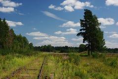 Vieux chemin de fer dans les domaines Photographie stock libre de droits