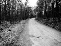 Vieux chemin de terre en bois Photo libre de droits