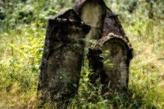 Vieux cimetière juif abandonné Illustration brouillée d'effet illustration libre de droits
