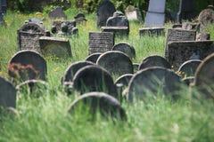 Vieux cimetière juif dans Holesov Photographie stock libre de droits