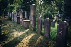 Vieux cimetière juif historique à Wroclaw, Pologne Fond pour la conception et le texte de Halloween photos libres de droits