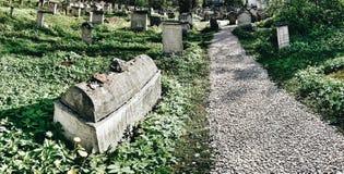 Vieux cimetière à Cracovie, Pologne Regard artistique dans des couleurs vives de vintage Image libre de droits