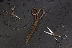 Vieux ciseaux de tailleurs Photos libres de droits