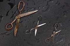 Vieux ciseaux de tailleurs Images stock