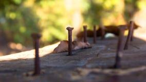 Vieux clous martelés photographie stock libre de droits