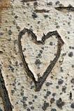 Vieux coeur d'écorce photo stock