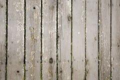 Vieux conseils en bois Photographie stock libre de droits