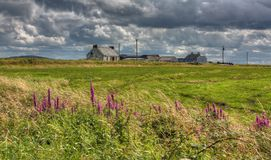 Vieux cottage et bordures de haies, Irlande Image stock