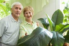 Vieux couples Photo libre de droits