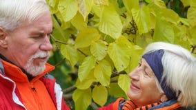 Vieux couples affectueux Photographie stock libre de droits