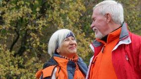 Vieux couples affectueux Image libre de droits