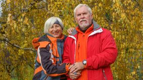 Vieux couples affectueux Photos libres de droits