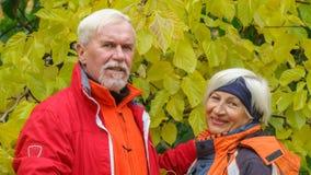 Vieux couples affectueux Images stock