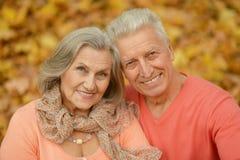 Vieux couples au parc d'automne Images stock