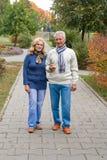 vieux couples au stationnement Photographie stock libre de droits