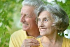 vieux couples au stationnement Photo libre de droits
