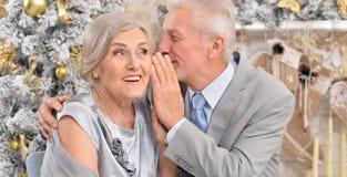 Vieux couples célébrant Noël Photos stock