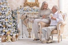 Vieux couples célébrant Noël Photo stock