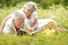 Vieux couples d'une manière amusante sur le pique-nique Photos stock