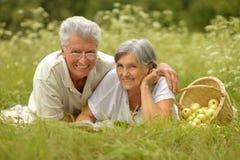 Vieux couples d'une manière amusante sur le pique-nique Photographie stock libre de droits