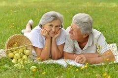 Vieux couples d'une manière amusante sur le pique-nique Image libre de droits