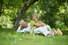 Vieux couples d'une manière amusante sur le pique-nique Photo stock