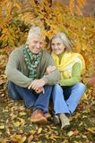 Vieux couples en stationnement Photos stock