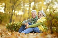 Vieux couples en stationnement Images stock